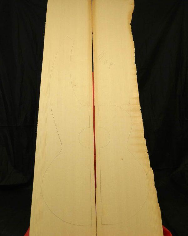 2A Full Figured Sedgewick Harp Guitar