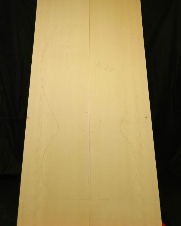 Best Grade Dyer Harp guitar Non-figured